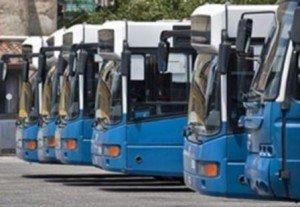 cotral-autobus_full-300x207