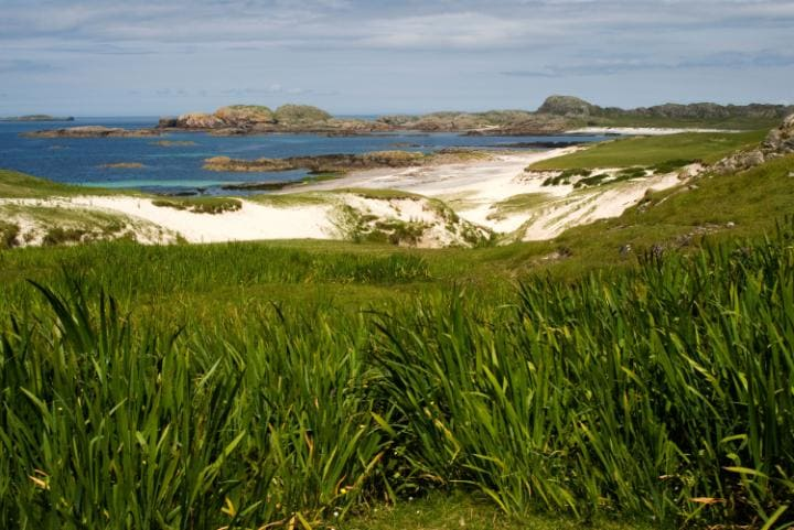 Bay at the Back of the Ocean, Iona
