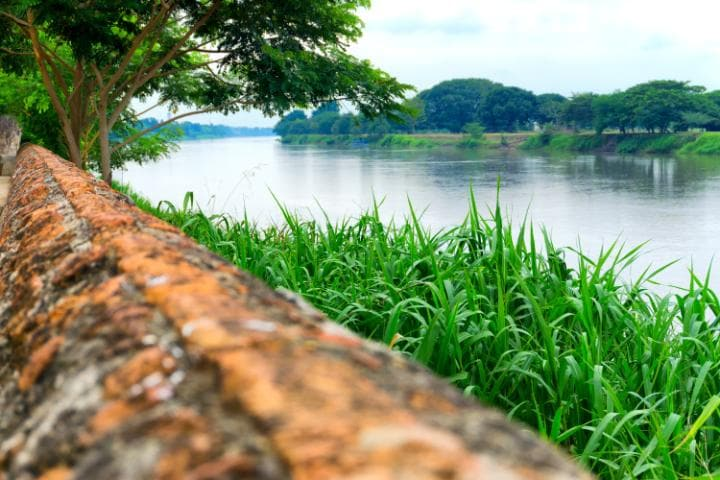 "Márquez once claimed to ""know every village and every tree"" on the Magdalena River"