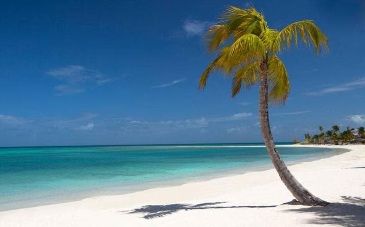 Image result for antigua beaches