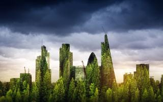 Why CEOs need to consider environmental liability