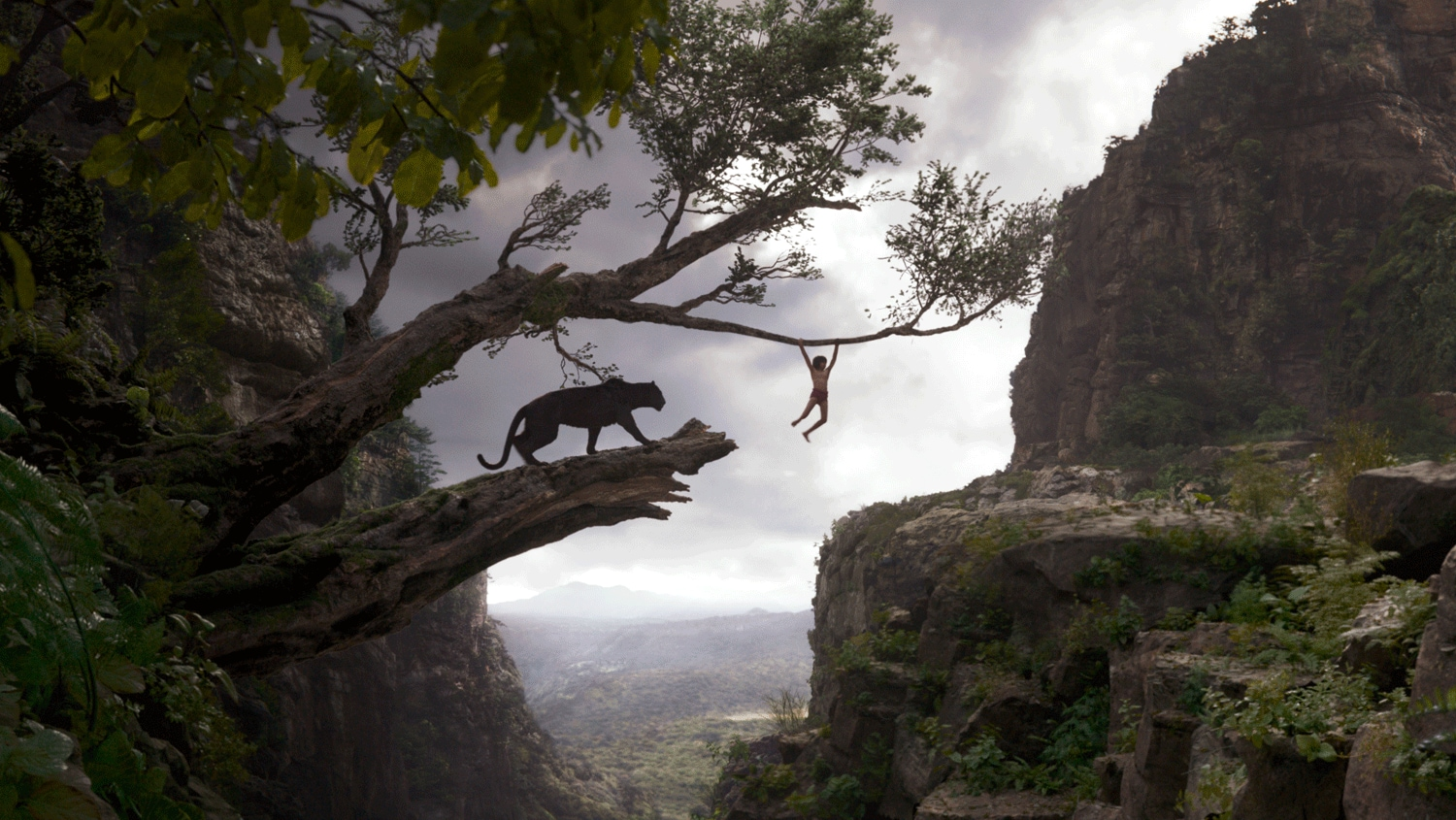 A still from The Jungle Book