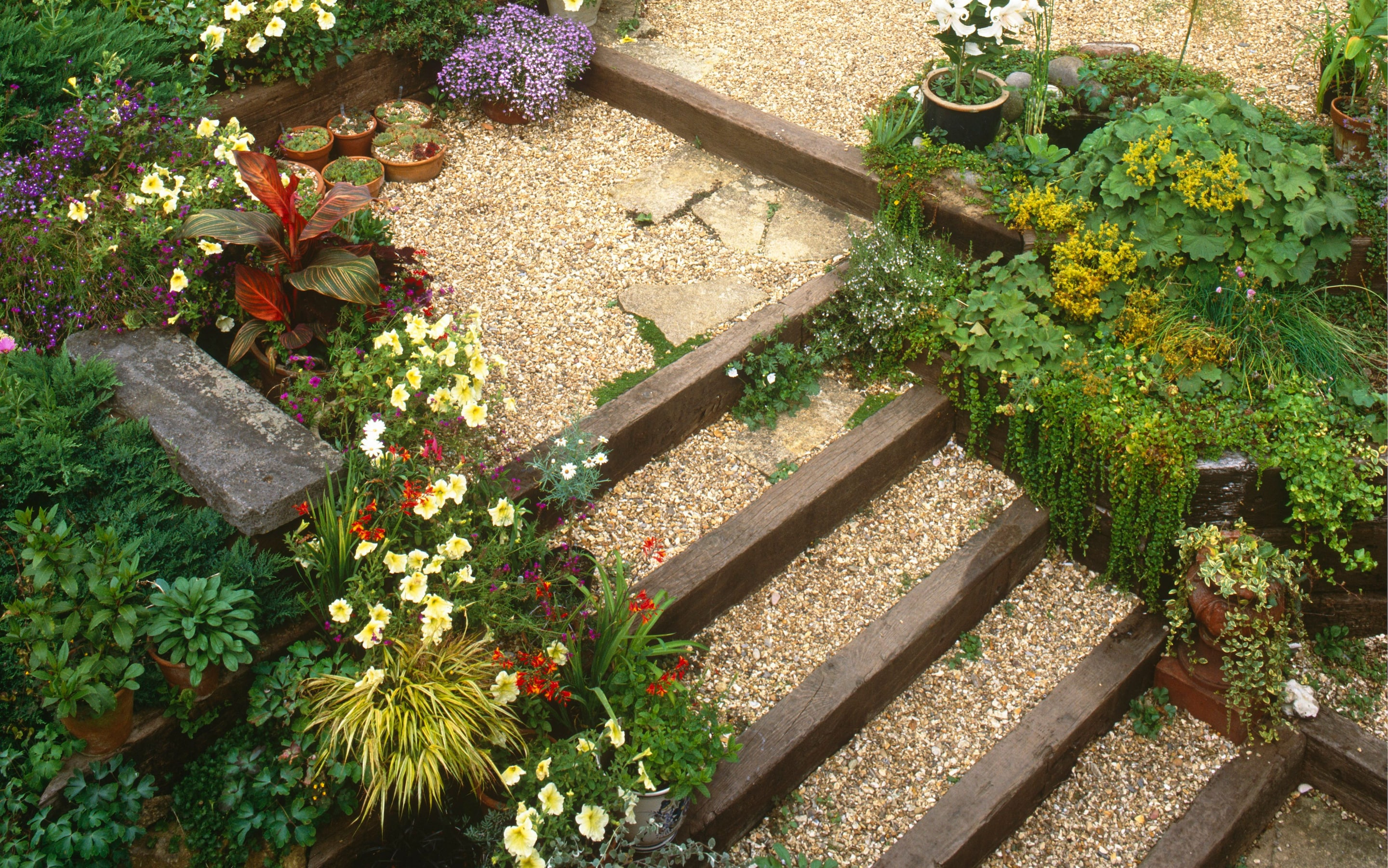 How to plant a steep, sunny bank | The Telegraph on Steep Sloping Garden Ideas  id=59552
