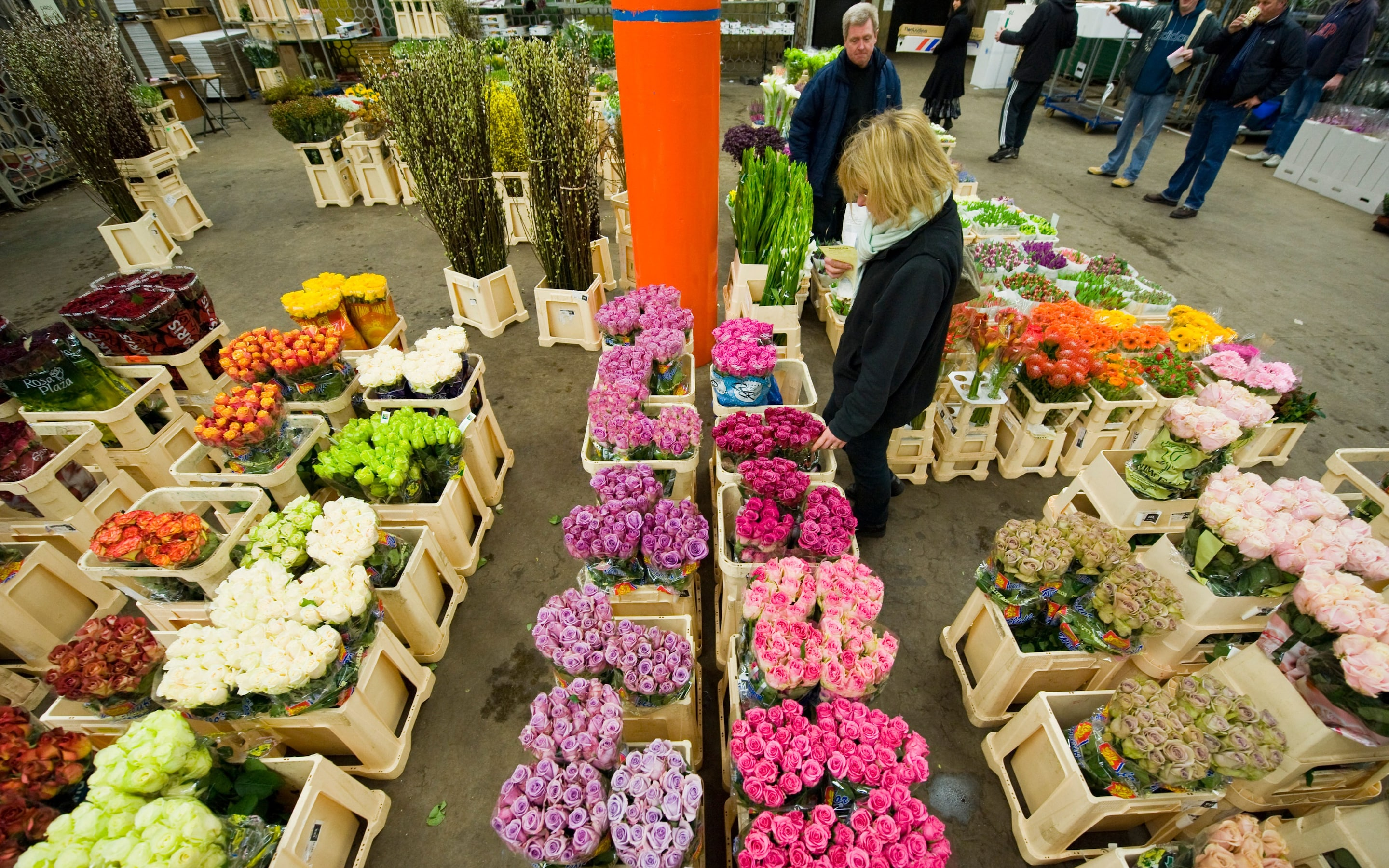 covent garden market london flower Shoots of recovery: Why British cut flowers could be