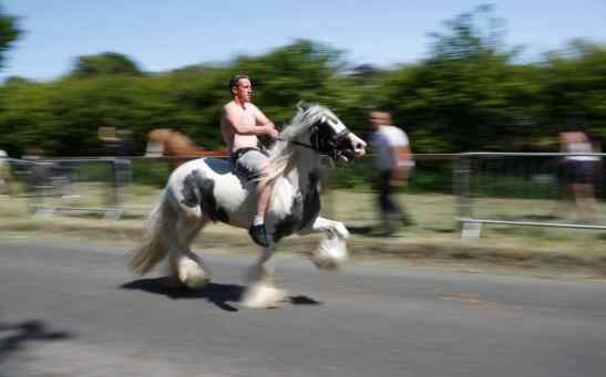 Image result for person sat on horse on road