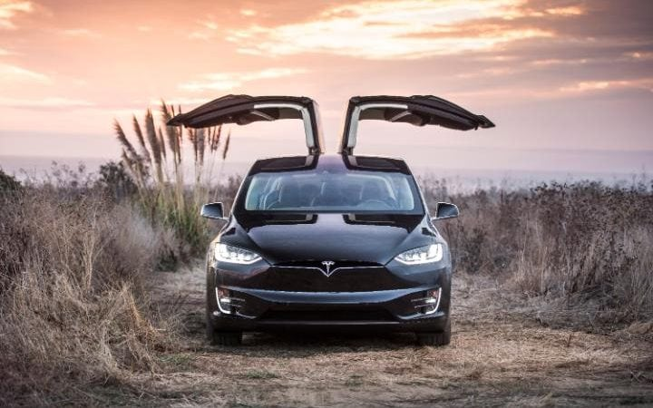 The gull wing doors of the Model X are seen open front on. The car sits in long grass