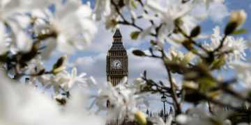 Ask your council to plant a tree on your road, RHS urges, as it announces majority of Britain in Bloom finalists are in urban areas