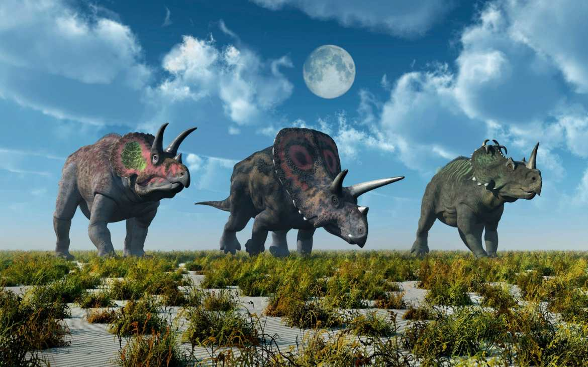 The Centrosaurus apertus, a horned dinosaur that lived 76 to 77 million years ago in present day Canada.