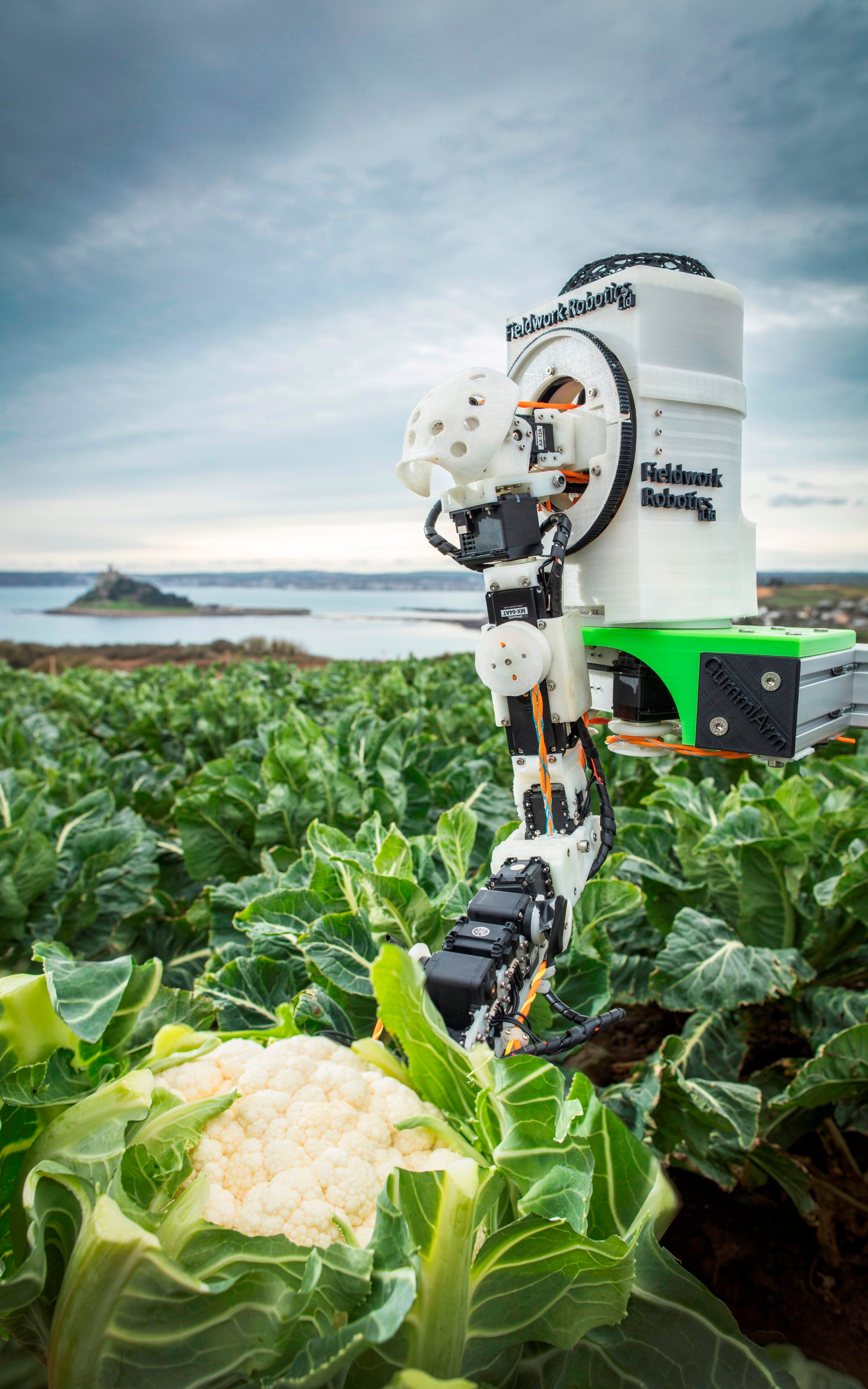 Robots could help farmers cope with shortages of manual labour