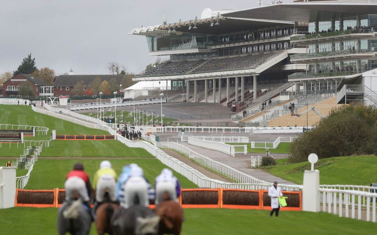 Solutions are being sought for the horse-racing industry