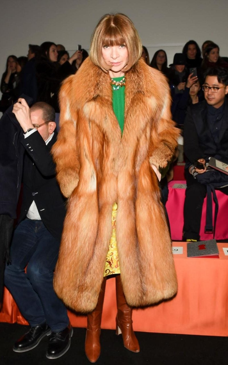 Anna Wintour, arbiter of cosy chic CREDIT: REX//SHUTTERSTOCK