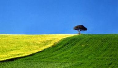 Storie di terra - Franco Fontana