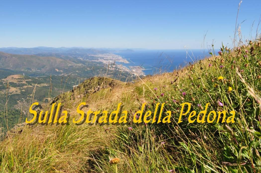 Escursioni LiguriaEvento Speciale: Sulla Strada della Pedona - Trekking Liguria