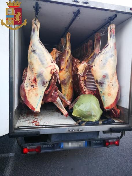 Rc: Sequestrata carne equina non tracciata