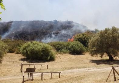 Incendio al sito archeologico di Morgantina, nessun danno a strutture e beni