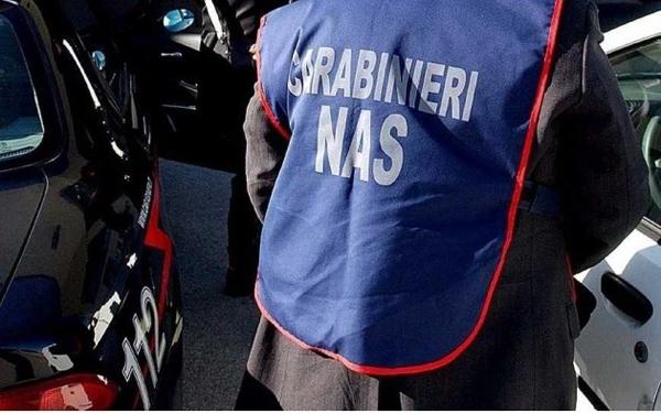 Carabinieri Enna effettuano controlli in aziende zootecniche: arrestato un titolare, chiusi due stabilimenti, irrogate sanzioni amministrative per presenza di lavoratori in nero