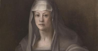 Studio scopre sifilide della moglie di Giovanni dalle Bande Nere