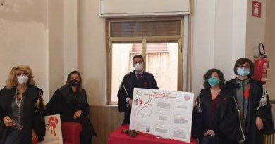 Il Comitato per le pari opportunità dell'Ordine degli avvocati di Enna celebra la giornata contro la violenza sulle donne