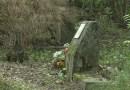 Őszi nagytakarítás volt a régi temetőben