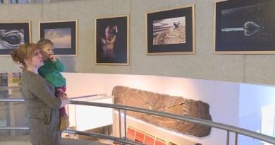 Megnyitották Pámerné Bükky Klára kiállítását az ESZI-ben