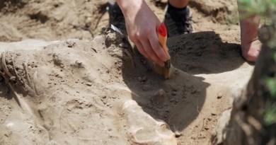 Újabb temetőt tárnak fel a régészek