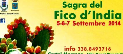 castel+morrone-15x7.-sagra-fico-india-