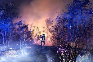 castel-incendio-52-615x410