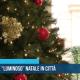 mercatini natalizi a Trani