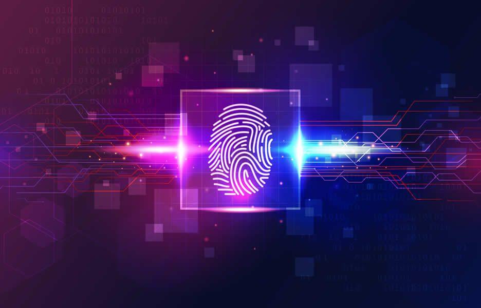 digital veto PL impressão tecnologia identidade privacidade