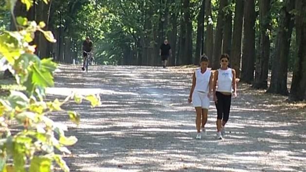 Camminare fa bene alla salute. Esercizio fisico e movimento anche d'estate, ma con astuzia – VIDEO