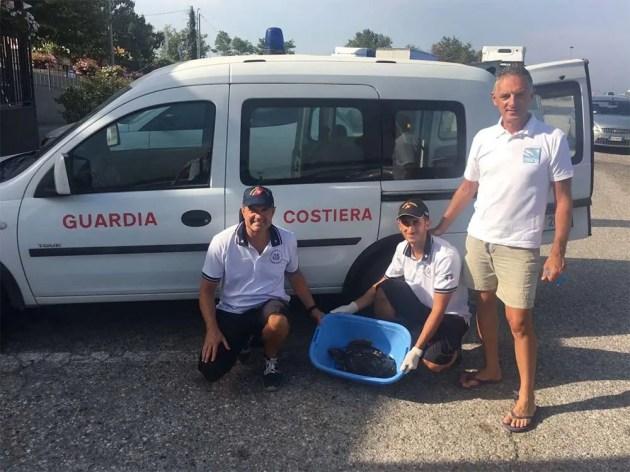 Lido Estensi, Guardia Costiera recupera tartaruga marina viva