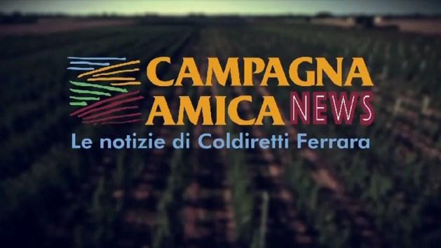 """Coldiretti: notizie e interventi di """"Campagna amica"""" su Telestense"""