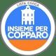 Insieme per Copparo - Diego Farina