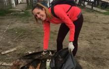 Trovano rifiuti in golena a Goro, riconosciuto l'autore del gesto: multato
