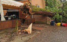 Maltempo a Ferrara, a Parco Massari cade il grande albero vicino al bar