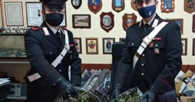 Comacchio: oltre un chilo di marijuana in casa, arrestato 48enne