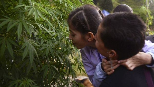 Ines Cano (R) and her daughter, who uses medical marijuana to treat the symptoms of refractory epilepsy, visit the Cannalivio cannabis lab, Colombia May 7, 2015.