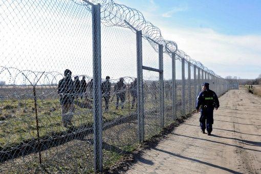 """Se trata de una vaya """"experimental"""" con la que se busca verificar la tecnología que utilizarán en la definitiva, anunció el Gobierno húngaro."""