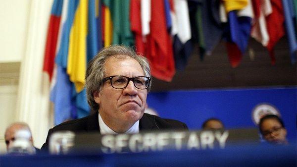 Luis Almagro continúa con sus acciones injerencistas contra Venezuela