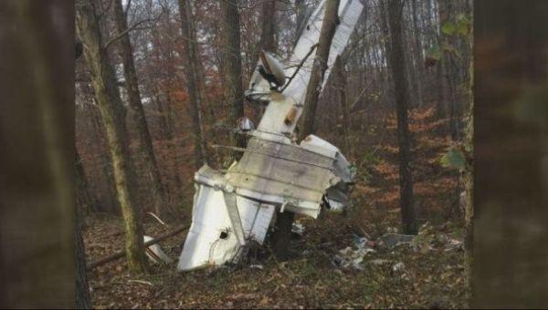 Parte del avión quedó dentro de las grandes ramas en un árbol.