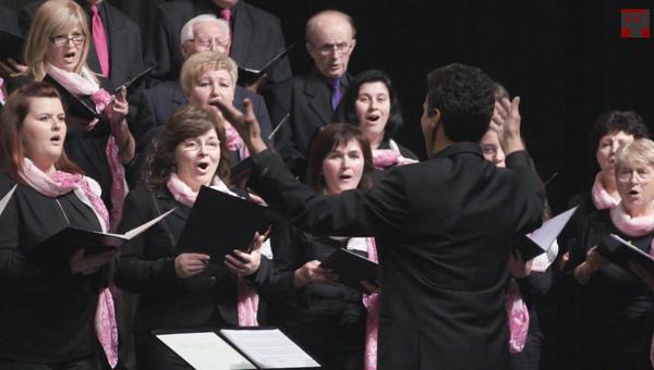 Musica Aurea Vegyeskar