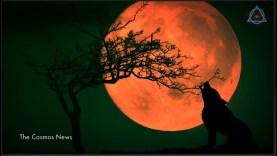 Ne hagyja ki a hétfői holdfogyatkozást!