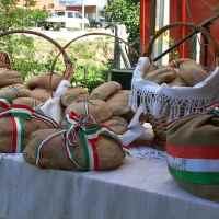 Szent István-nap és az Új kenyér ünnepe Bősön