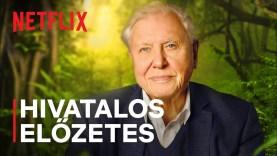 A 95 éves David Attenborough leszámol az illúziókkal