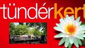 A Csallóközi néptáncegyüttes és a Pósfa zenekar a Tündérkertben (4)