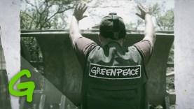 A remény színe a zöld – 50 éves a Greenpeace
