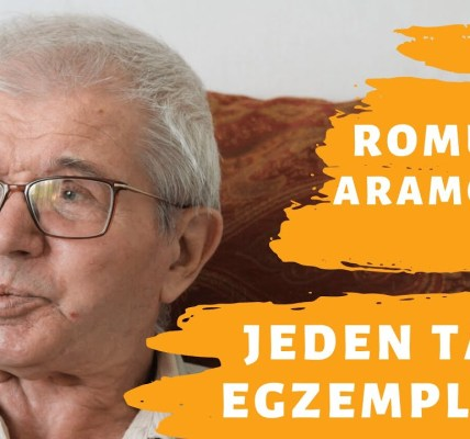 Jeden Taki Egzemplarz - Romuald Aramowicz