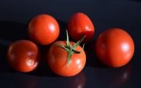John Denver und die Tomaten aus dem Garten