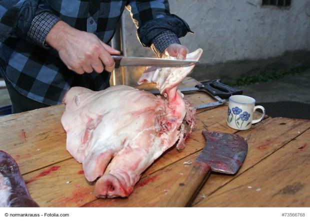 Schweinskopfsülze selbstgemacht - Megatrend 2016? Die Zukunft wird's zeigen