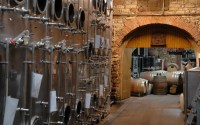 Weinkontrolle: In Vino fast alles Veritas